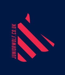 james wilson junior wolf graphic and web design agency croydon london logo
